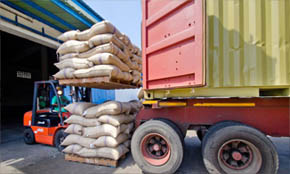 Import Big Cardamom from India
